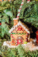 Pretty house christmas decoration