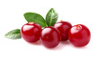 Cranberry with leaves in closeup