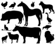 on the farm - set of fine vector silhouettes