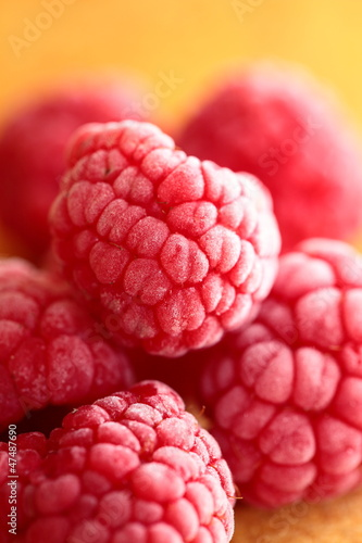 Beautiful selection of freshly picked ripe red raspberries.