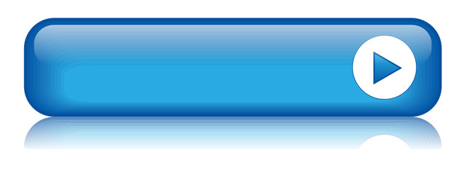 BLANK web button (rectangular blue icon symbol)