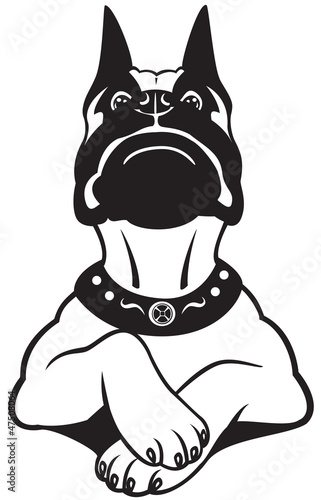 cartoon boxer black white