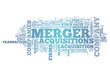 "Word Cloud ""Merger & Acquisitions"""