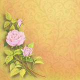 Illustration rose on background with ornaments