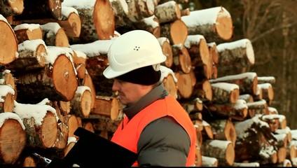 Lumberjack check log pile