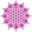 Blume des Lebens / Lotus Blüte