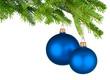 Zwei blaue Christbaumkugeln hängen am Tannenzweig