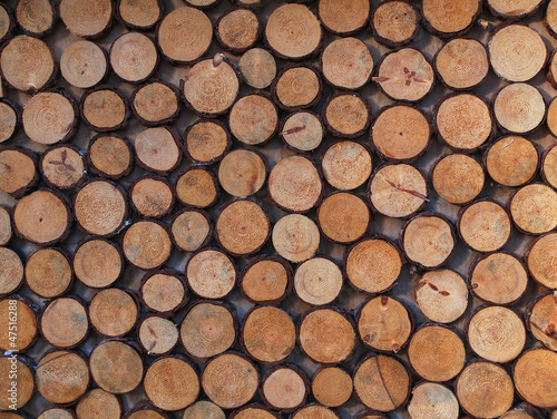 baumscheiben stockfotos und lizenzfreie bilder auf bild 47516288. Black Bedroom Furniture Sets. Home Design Ideas
