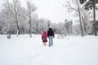 snowy town park
