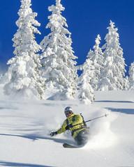 Skifahrer im Winterwonderland