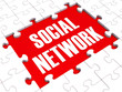 Social Network Puzzle Shows Virtual Interactions