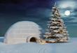 Leinwandbild Motiv christmas iglo