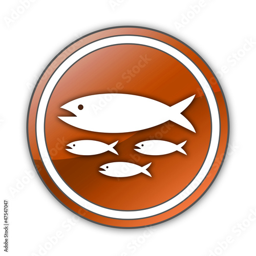 "Orange Glossy Button ""Fish Hatchery"""
