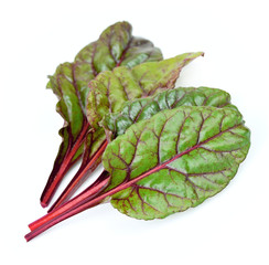 spinach beet leaves