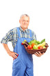 Mature farmer holding a basket full of fresh vegetables