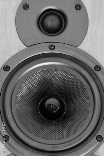 Loudspeaker close-up