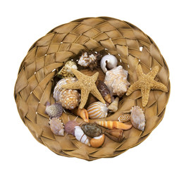 souvenir from the holiday, seashells, isolated