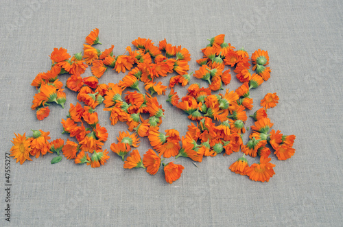 calendula medical blossoms on linen cloth