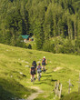Gruppe von Mountainbikern