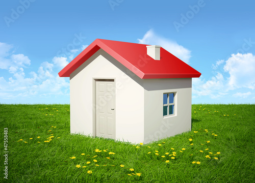 The house on a grass