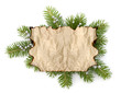 Old parchment paper with copy space on Christmas tree branch bac
