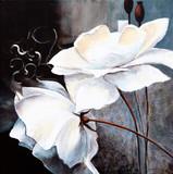 Fototapeta Weisse Blumen