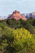 red rock of Sedona