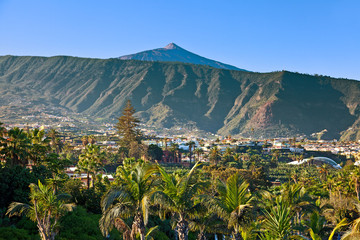 Teide Mountain Peak from Puerto de la Cruz