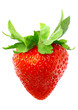 Single fresh strawberries. Isolated