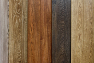Different species of wood, different textures and colors