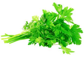 Fresh parsley on white background. Isolated