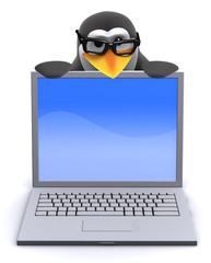 Penguin peeps over the top of laptop