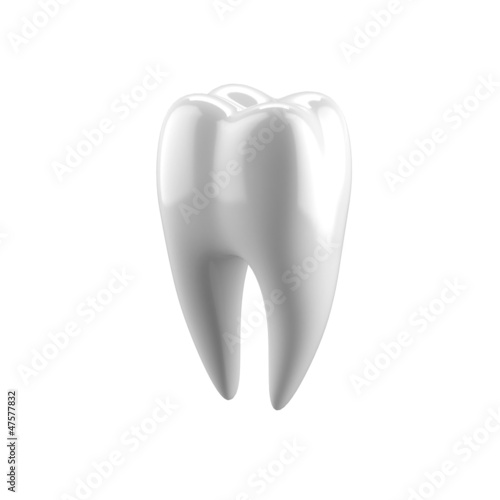 White human tooth
