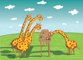 Giraffes Eating Dinner