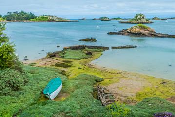green alga Brehat island france