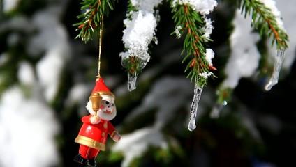 Bouncing figure on winter spruce
