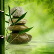 Natural zen backgrounds with bamboo leaves and pebble for your d