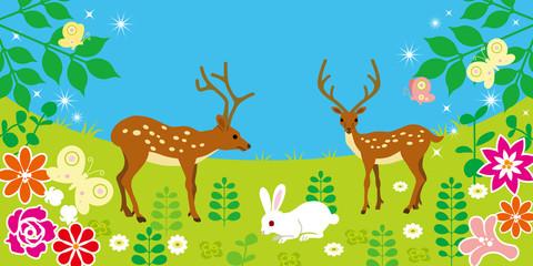 Cute Animals in spring field