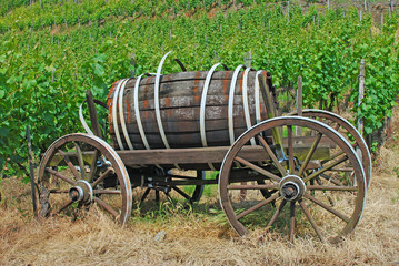 Weinwagen in den Weinbergen an der Ahr