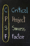 CPSF acronym Critical Project Success Factor poster