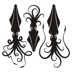 Squid silhouettes