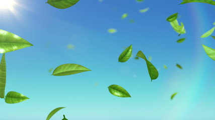 Beautiful Leaves flying in the sky with sun. HD 1080. Looped.