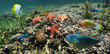 Panoramic view on a coral reef with starfish