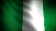 Flag of Nigeria (seamless)