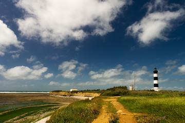 Landscape and lighthouse Island Oleron in France