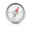 Detailed compass