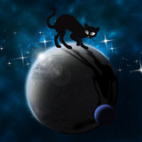 black cat on the planet