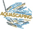 Word cloud for Aquascaping
