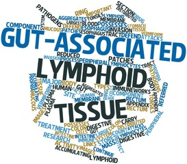 Word cloud for Gut-associated lymphoid tissue