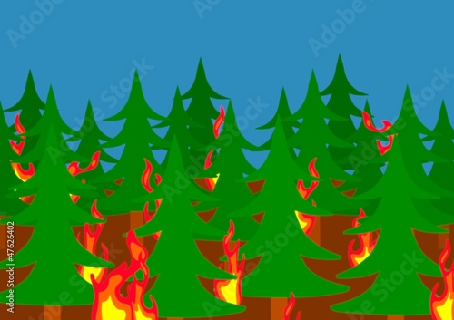 Foto op Canvas Bosdieren Forest fire
